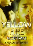 Yellow Fire Acceptance Fire Series Book 3 by Cassandre Dayne